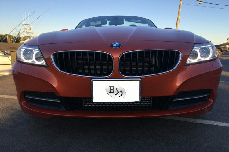BMW Z4 E89 LSD